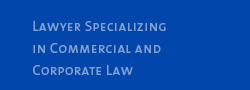 Lawyer Specializing in Commercial and Corporate Law